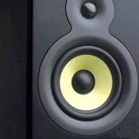 speaker_cropped